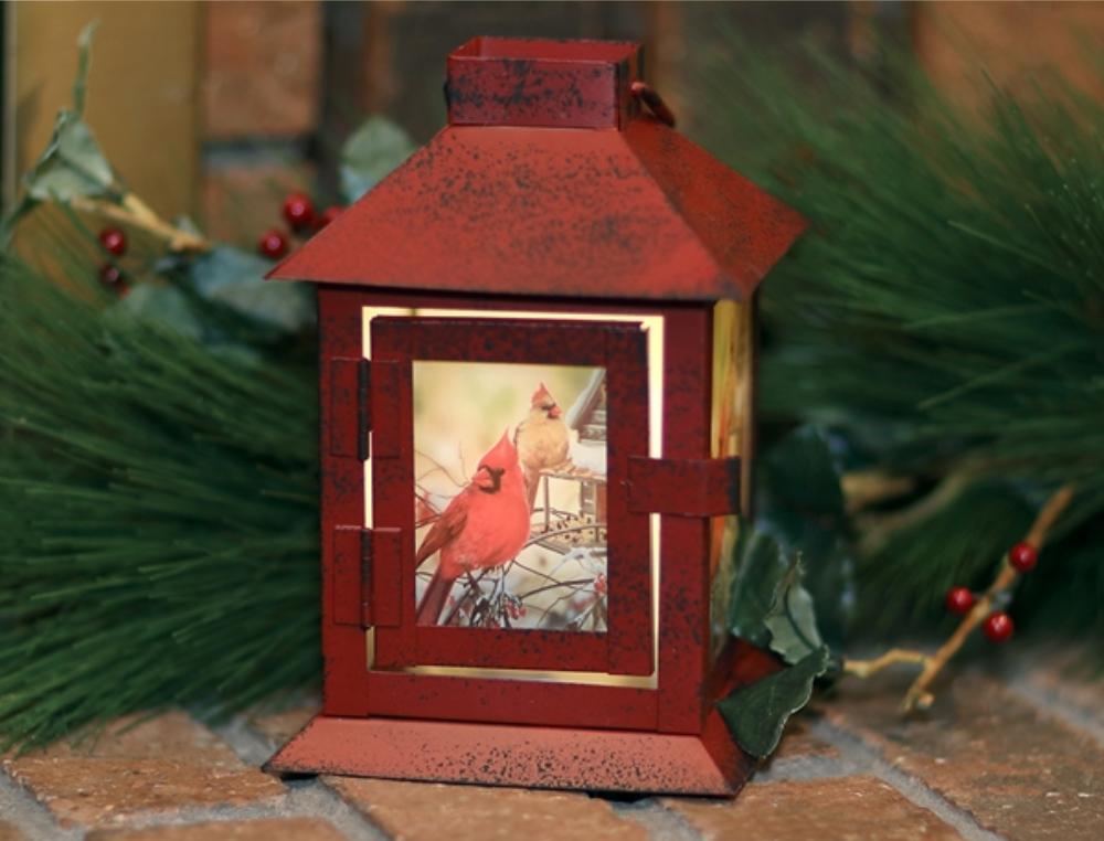 Cardinal Pair Lantern