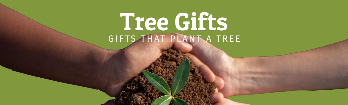 Tree Gifts header image