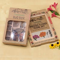 Bug Box & Frame Set