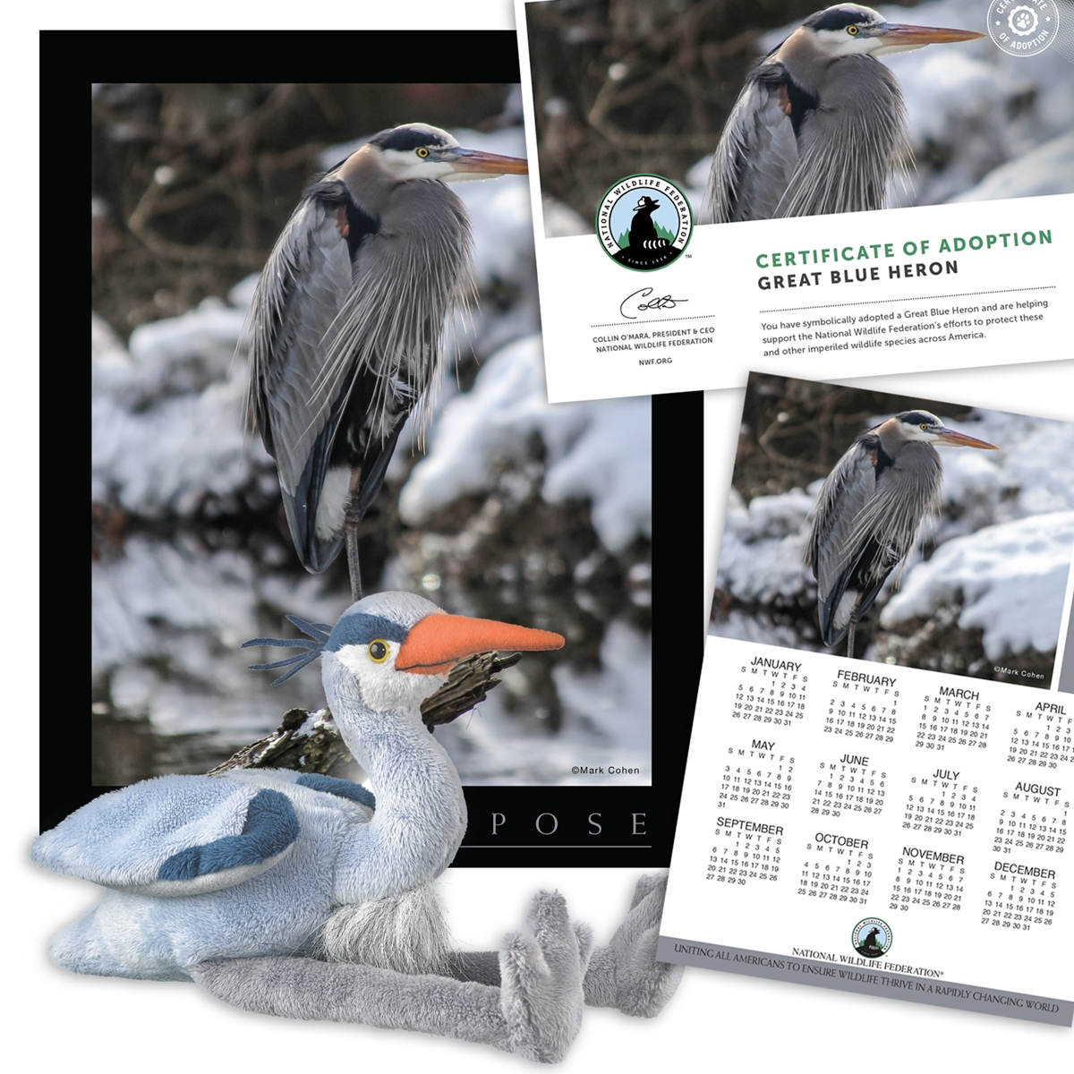 Adopt a Great Blue Heron