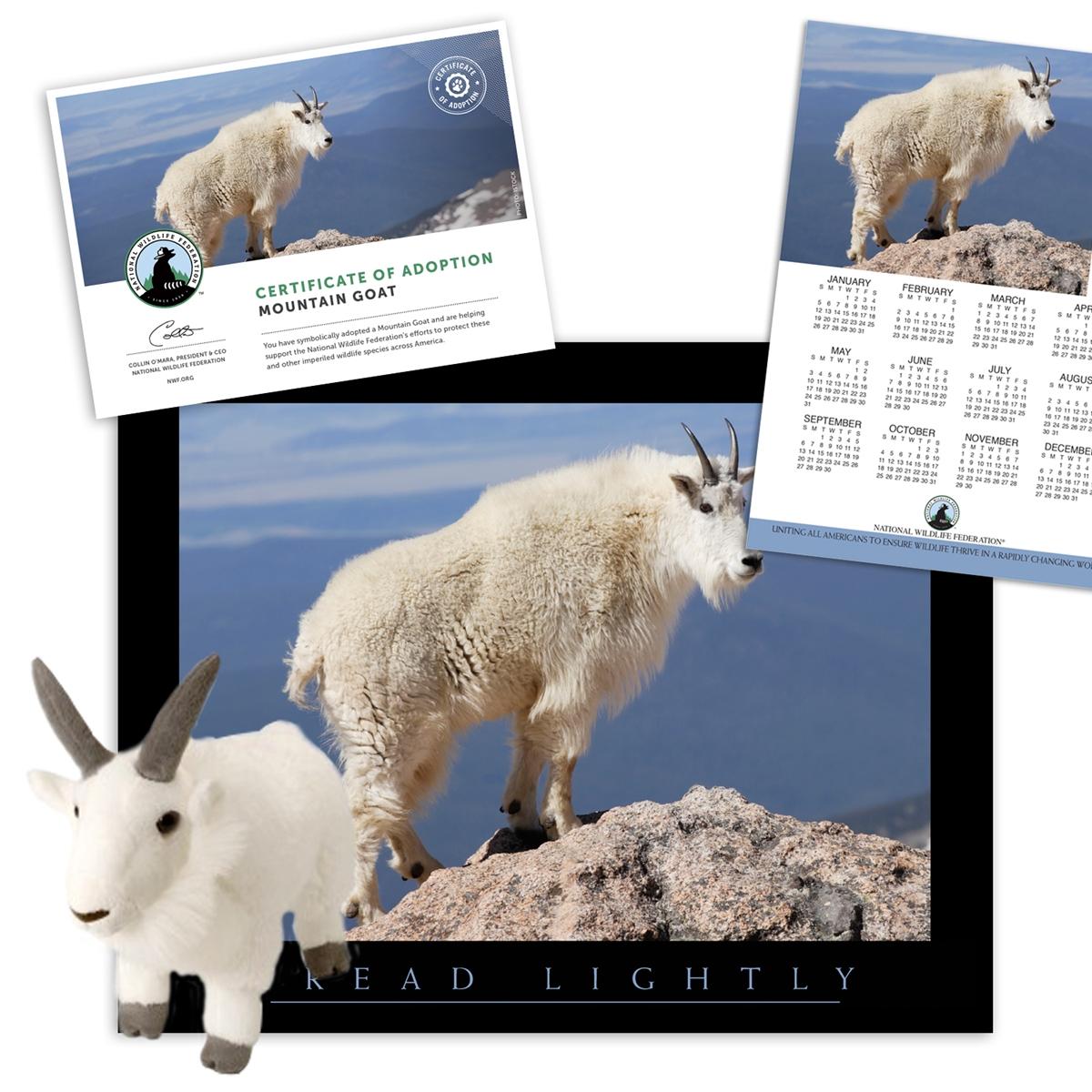 Adopt a Mountain Goat