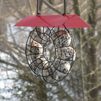 Suet Seed Ball Feeder