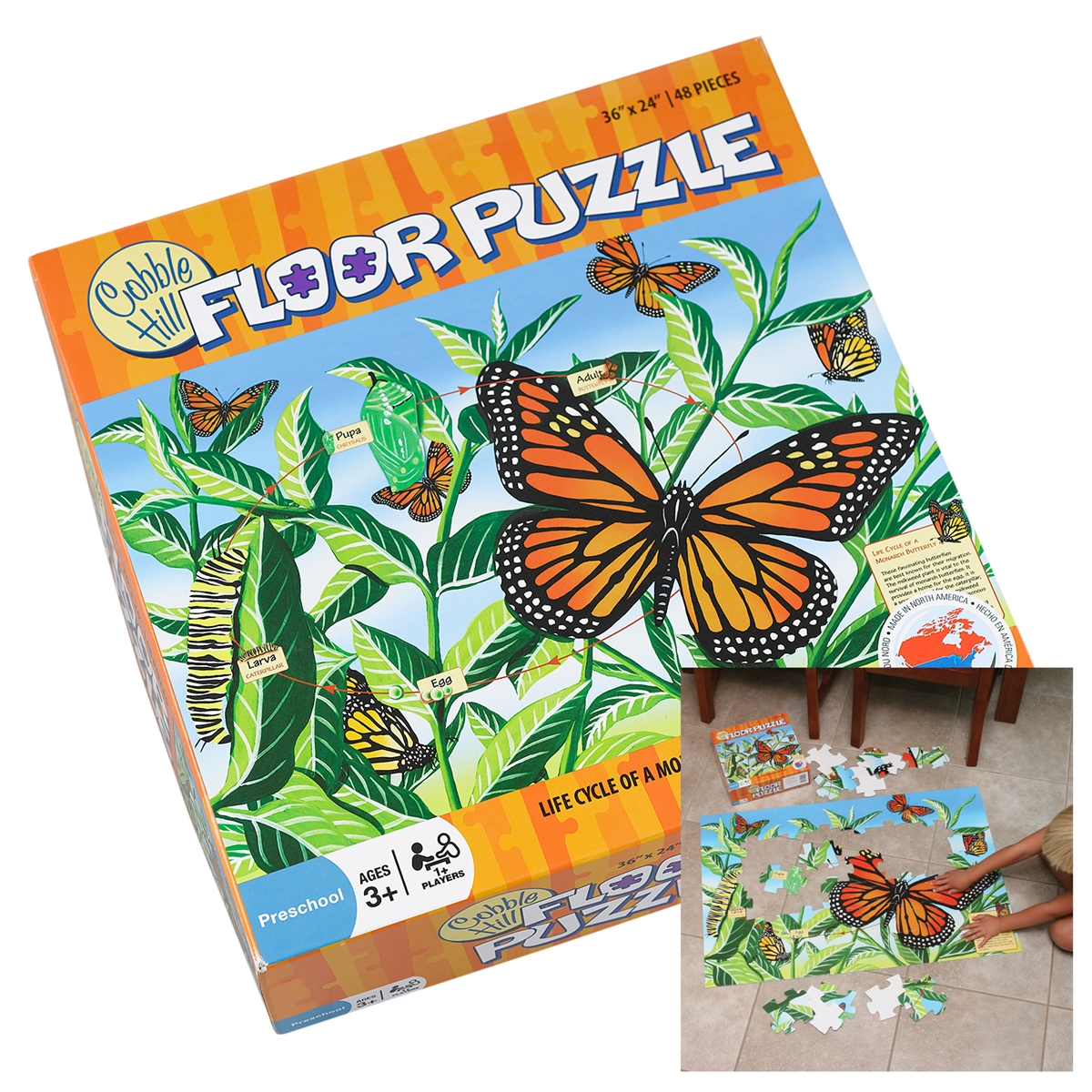 Monarch Life Cycle Floor Puzzle