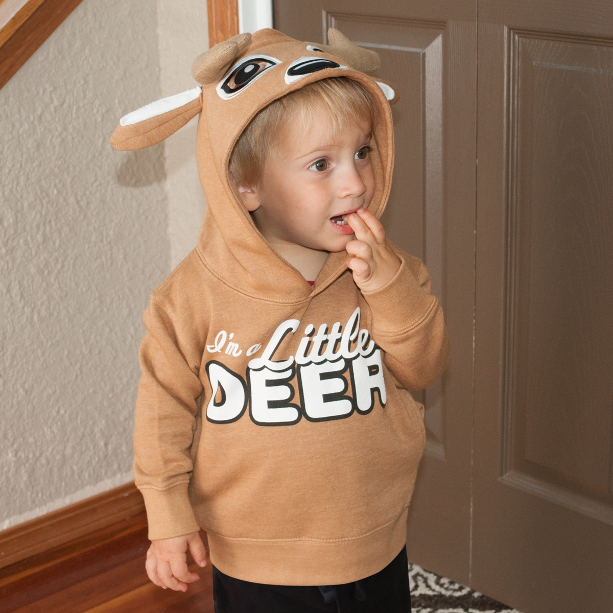 Little Deer Pullover