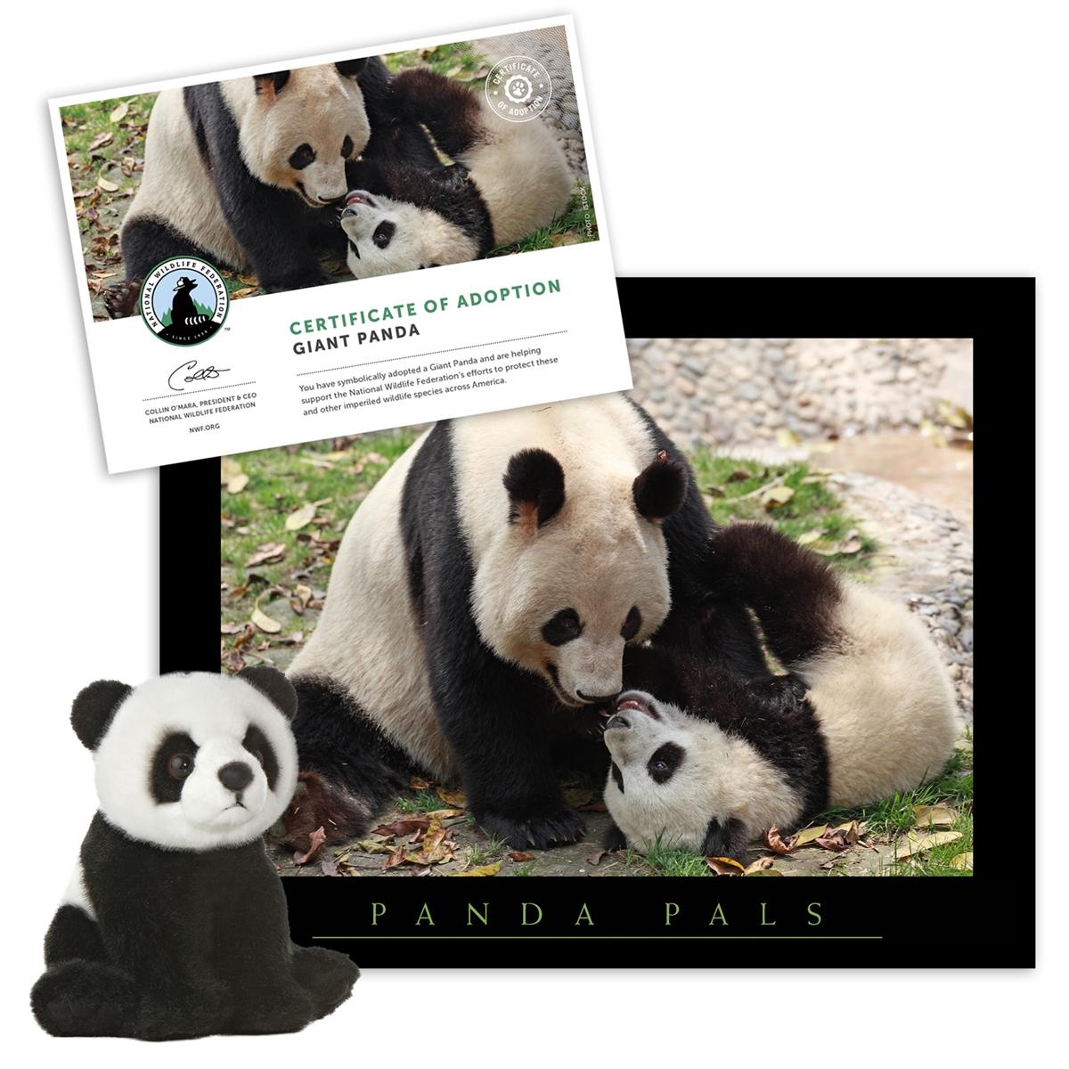 Adopt a Giant Panda
