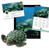 Adopt a Sea Turtle