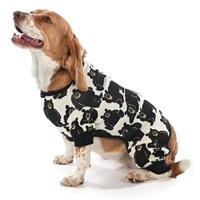 Family Bear Dog Coat