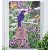 Bird LED-Lighted Canvas