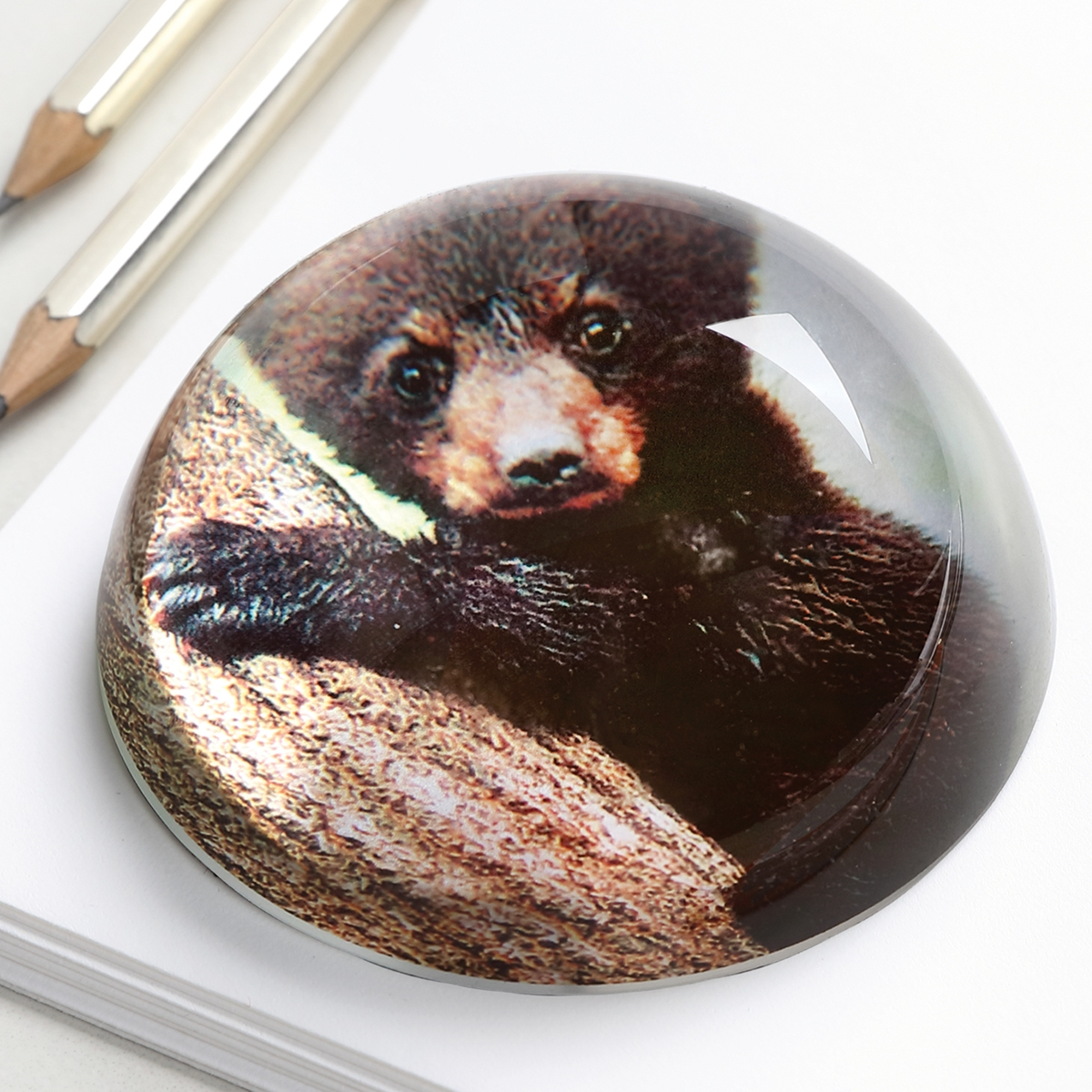 Bear Paper Weight