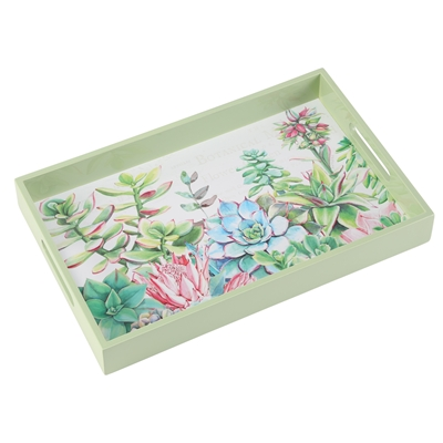 Succulents Tray