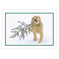 Bear's Christmas Tree Card