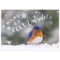 Bluebird in the Snow Card