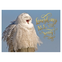 Snowy Owl Wonderland Card