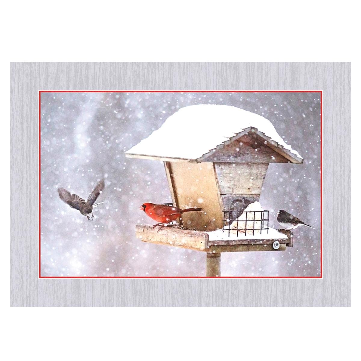 Cardinals on Birdfeeder in Snow Card