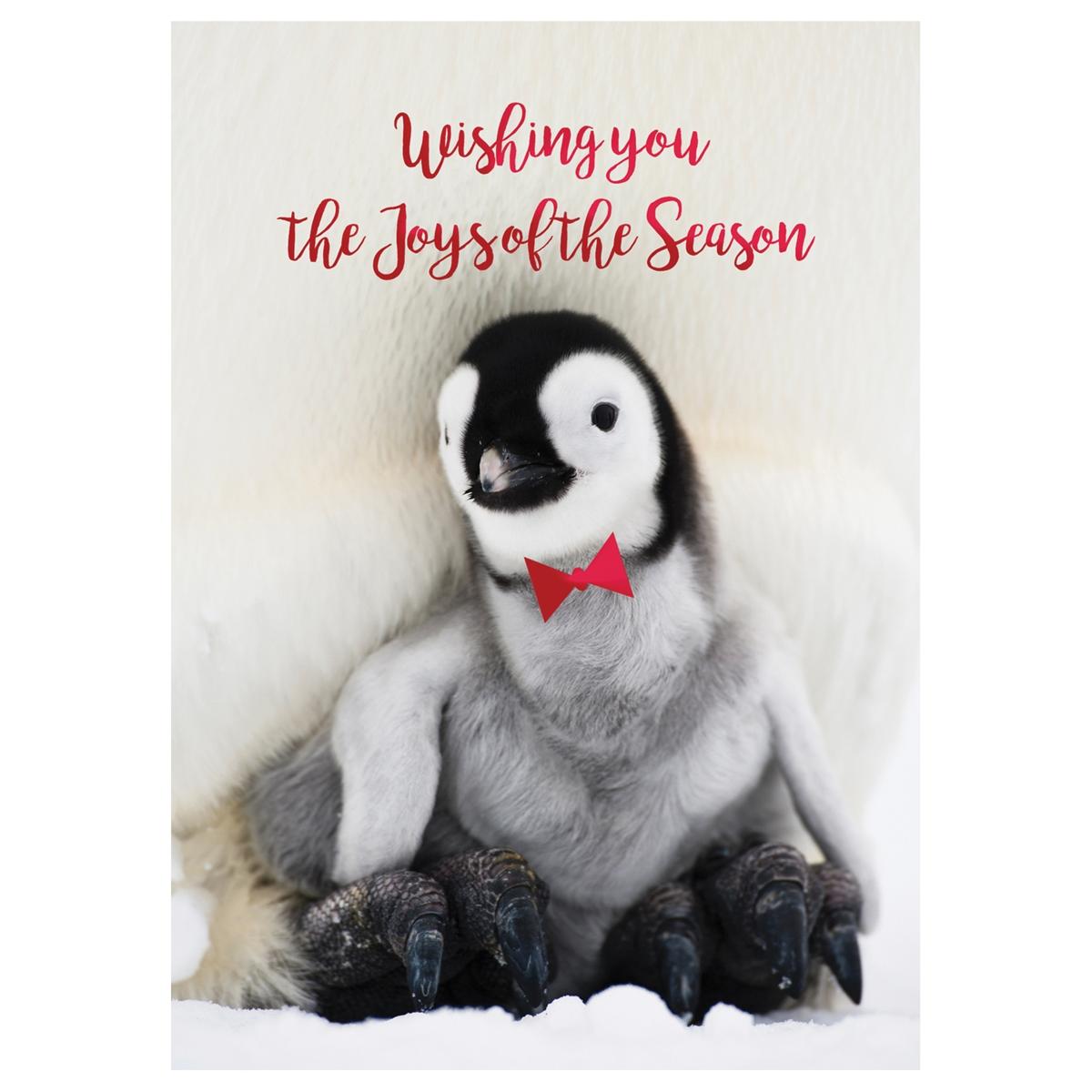 Penguin Greetings Card