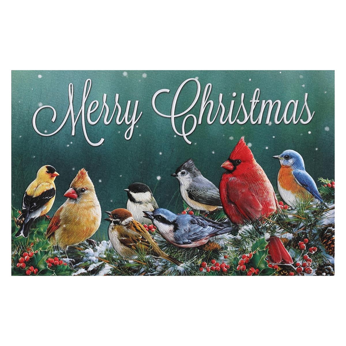 Merry Christmas Birds Card