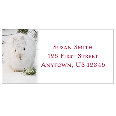 Snowshoe Hare Address Labels