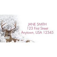 Buck in Winter Address Label
