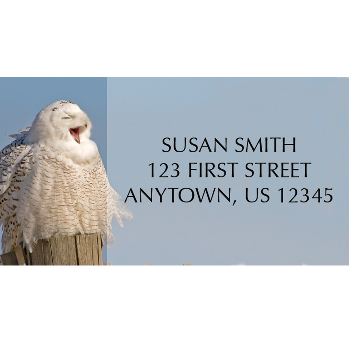 Snowy Owl Wonderland Address Label