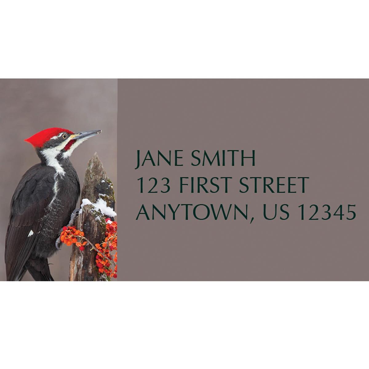 Pileated Woodpecker Address Label