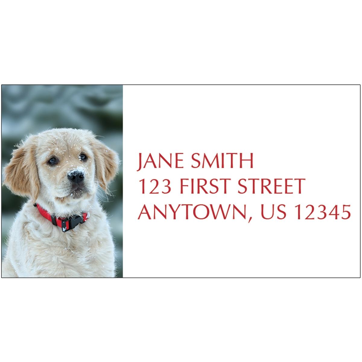 Golden Retriever Puppy in Snow Address Label