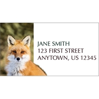 Red Fox Holiday Address Label