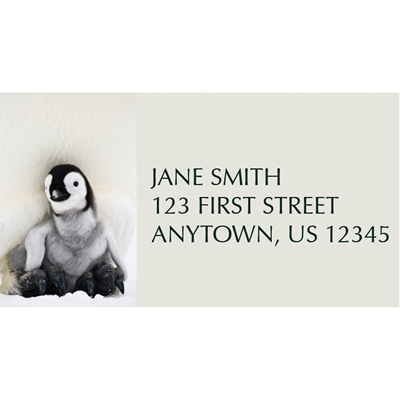 Penguin Greetings Address Label