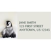 Penguin Greetings Address Label