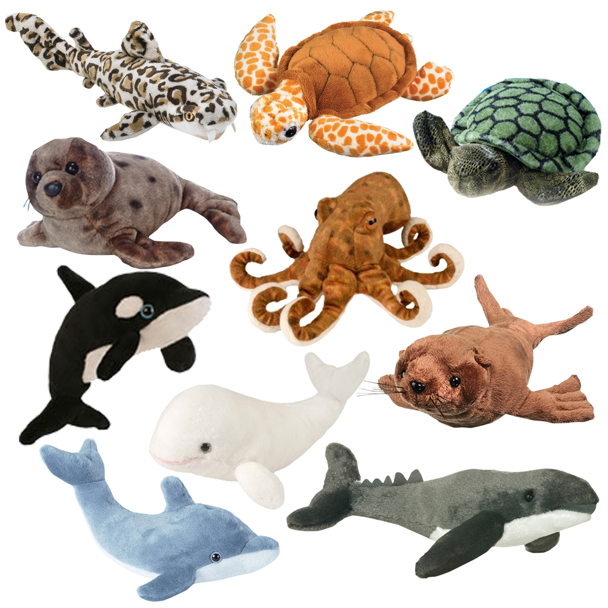 Ultimate Sealife Collection
