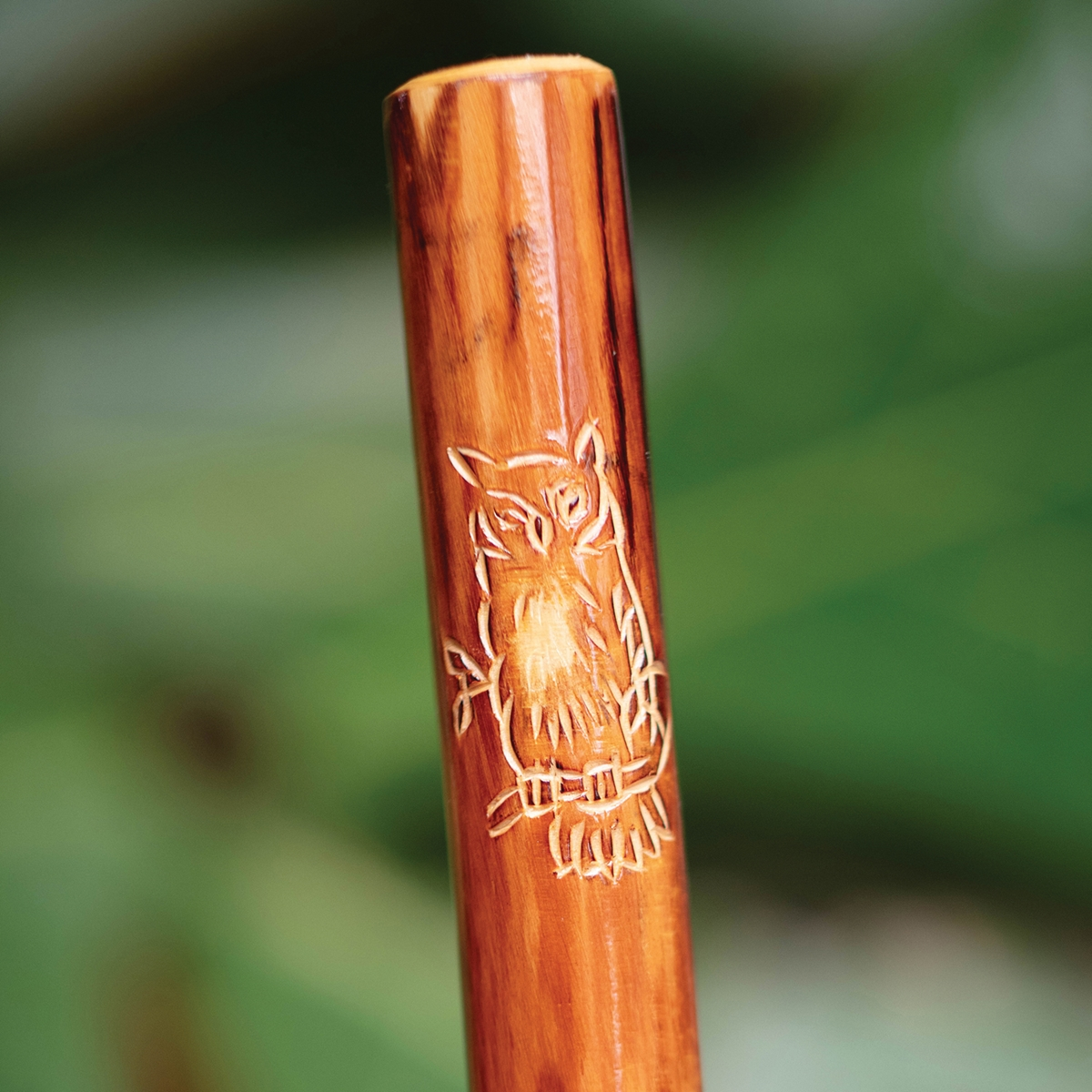Owl Hiking Stick