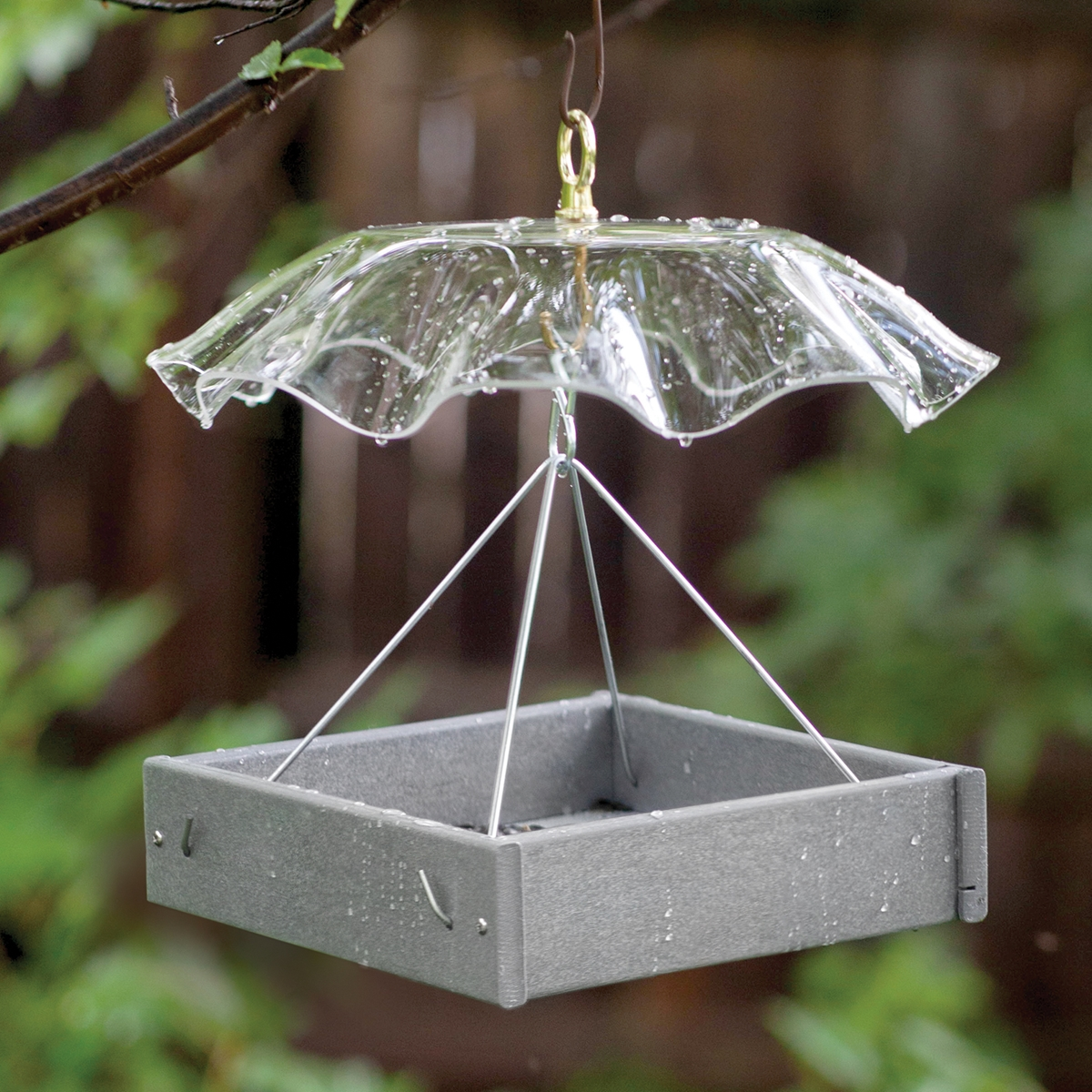 Platform Feeder with Weather Guard