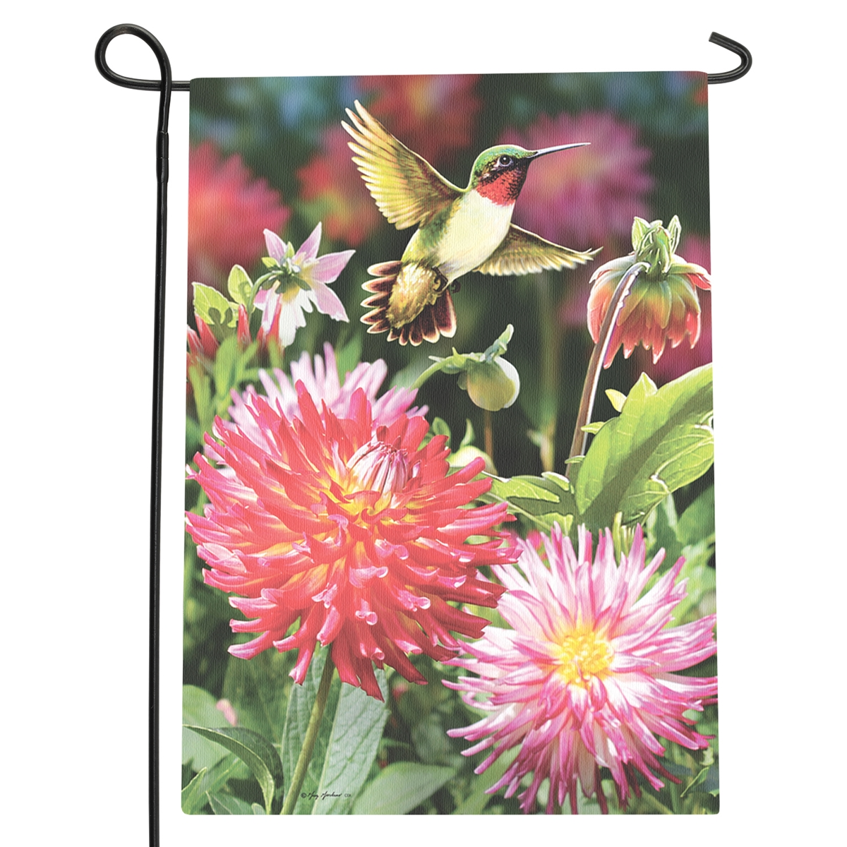Hummingbird Dahlias Garden Flag