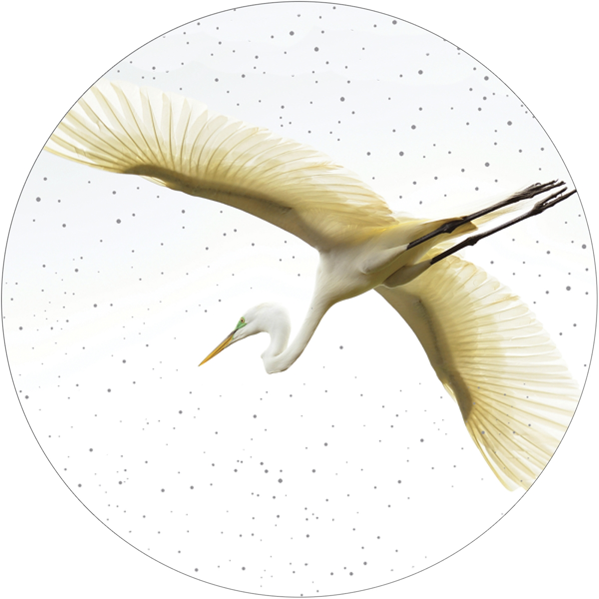 Great Egret Envelope Seal