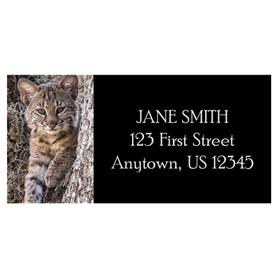Baby Bobcat Address Label