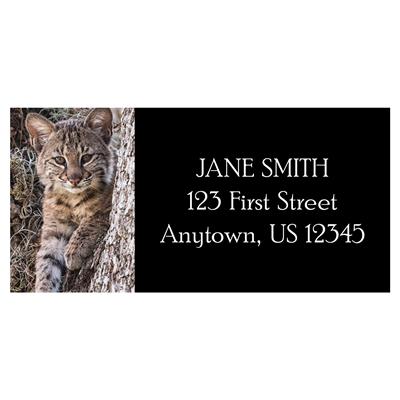Baby Bobcat Address Label