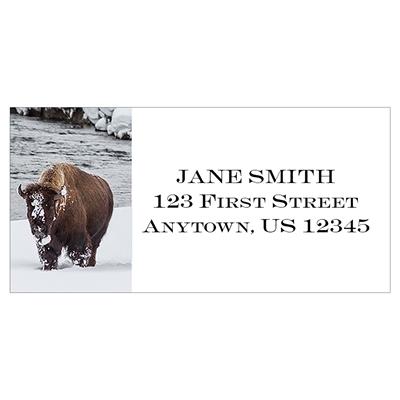 Winter Bison Address Label