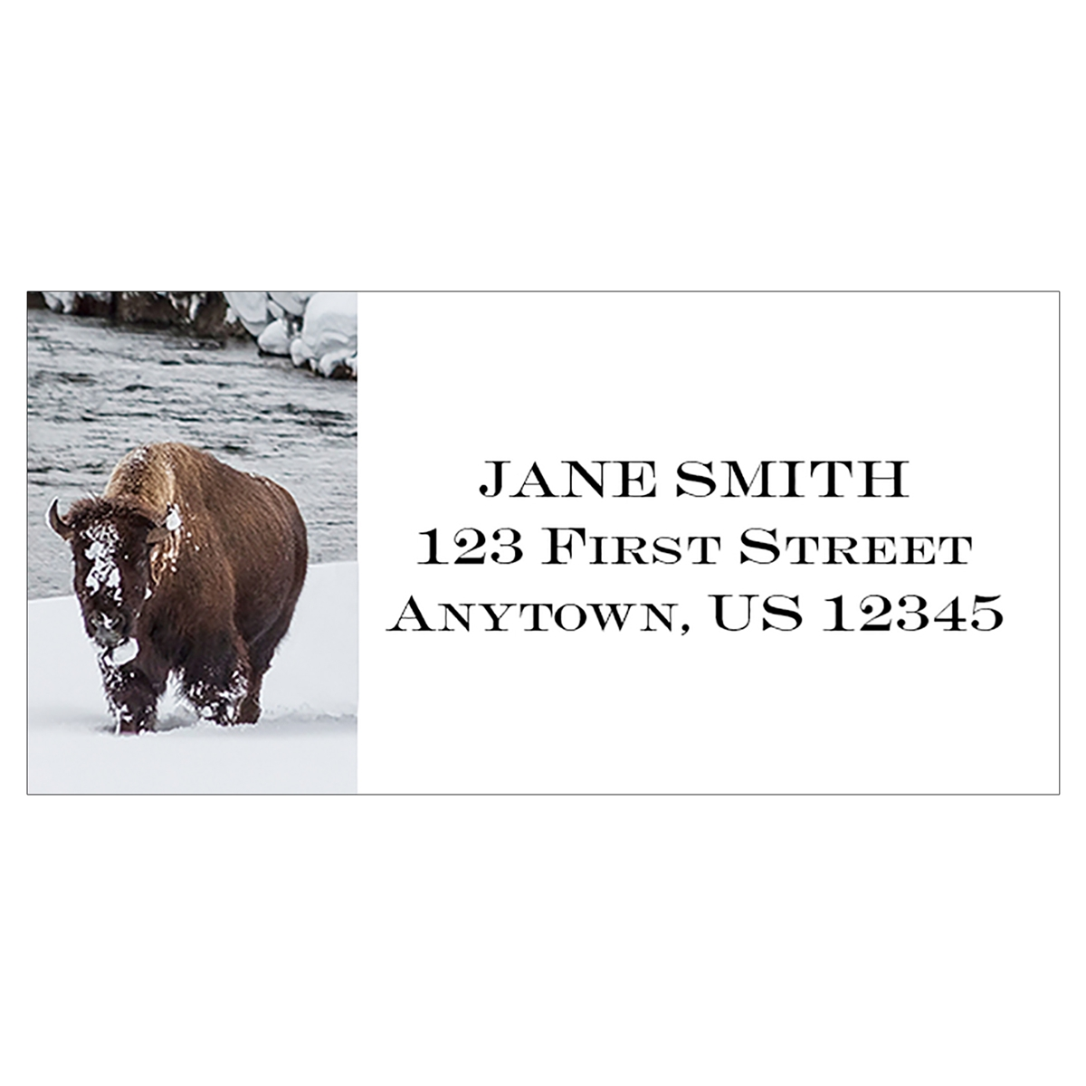 Winter Bison Address Label