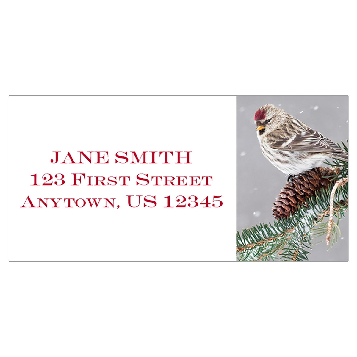 Common Redpoll Address Label