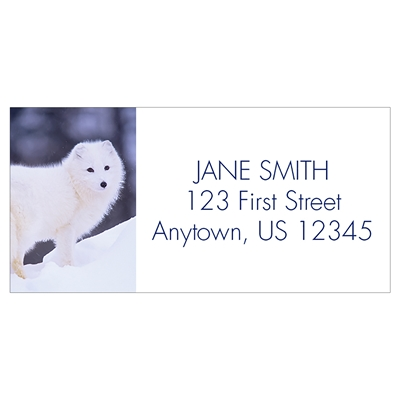 Peaceful Arctic Fox Address Label
