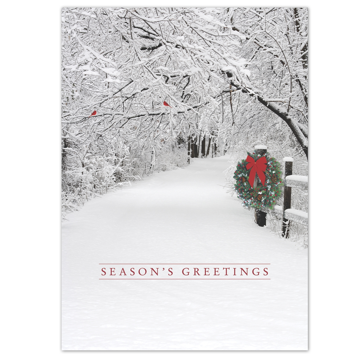 Snowy Lane Holiday Cards
