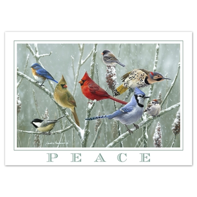 Songbirds and Sumac Card