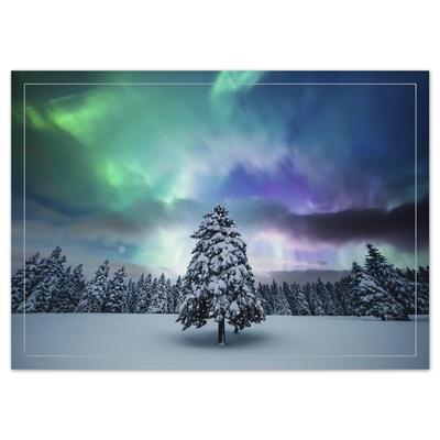 Northern Lights Tree Card