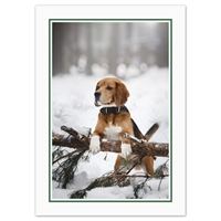 Holiday Beagle Card