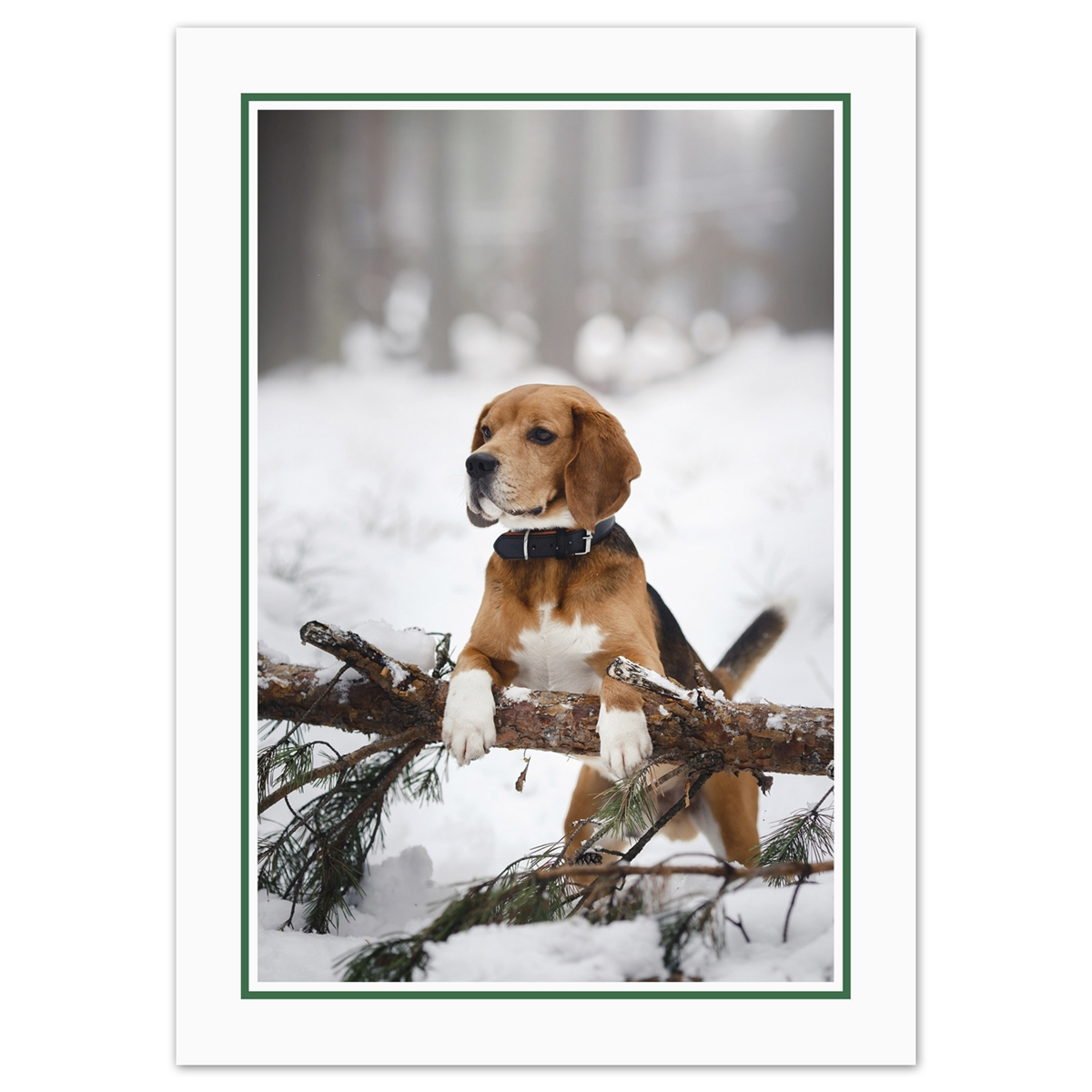 Holiday Beagle Card
