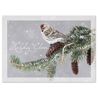 Common Redpoll Card