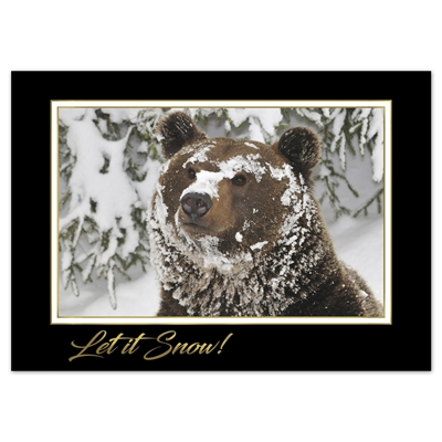Curious Grizzly Cub Card