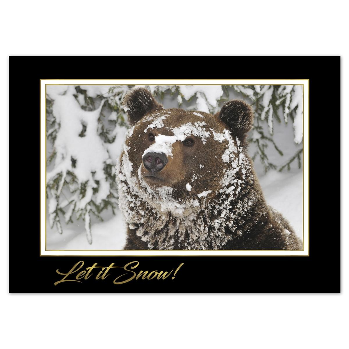 Curious Grizzly Cub Card
