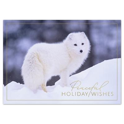 Peaceful Arctic Fox Card