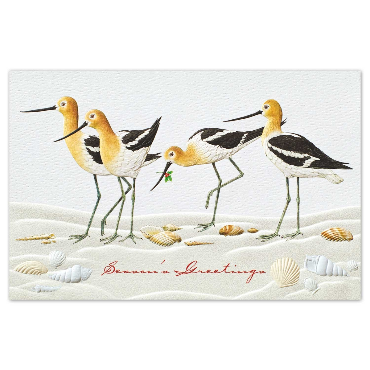 Joyful Avocets Card