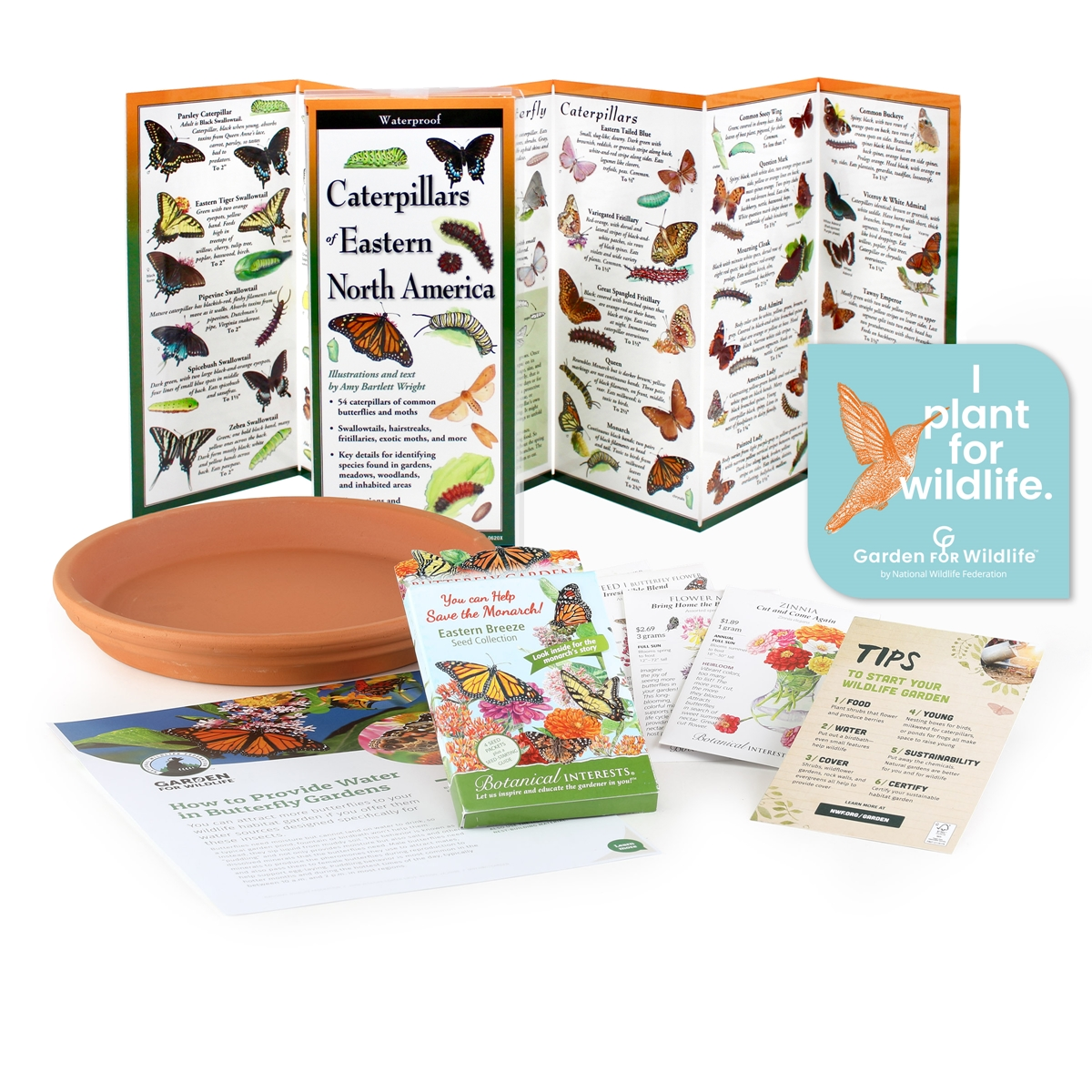 Eastern Breeze Butterfly Kit